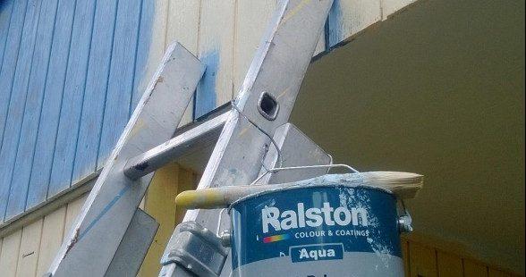 Ralston Aqua All primair pain